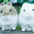 会員制 結婚式