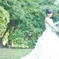 会員制 結婚式 ウエディングドレス
